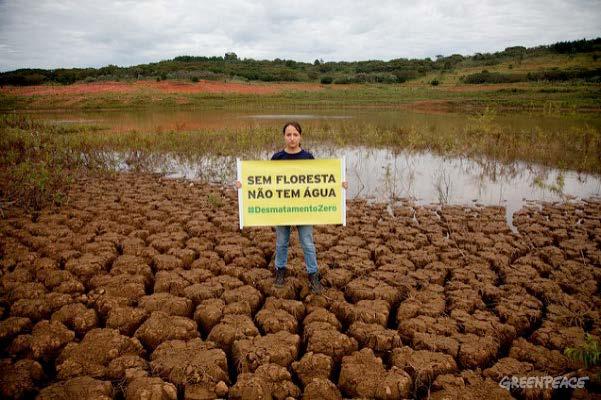 Imagem de Rios Voadores da Amazônia – Sem Floresta-Sem Água